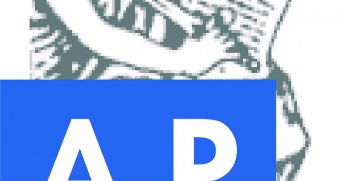 A.P.P.J. Asociación Empresarial de Peritaje y Valoraciones Judiciales