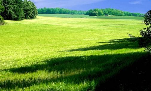 Curso de Peritaje Ambiental presencial en Elche