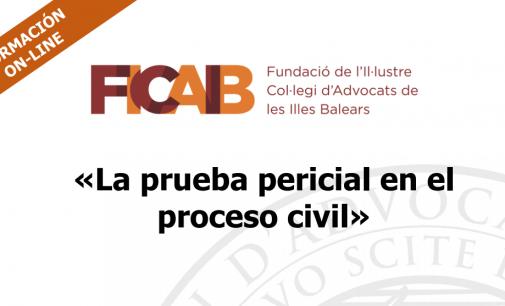 Webinar: La Prueba Pericial en el Proceso Civil